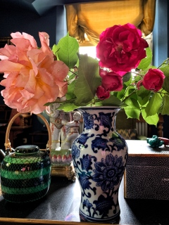 Roses from the garden and teapot